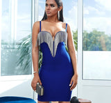 IVY Tasseled Bodycon Dress In Colors