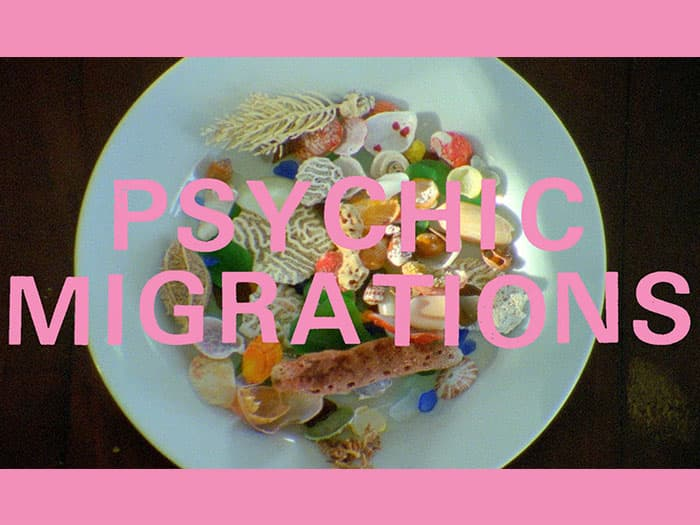 Stream Psychic Migrations Soundtrack ft. Thee Oh Sees, White Fence, Wand, Al Lover, and more