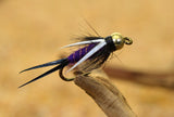 Purple Prince Nymph