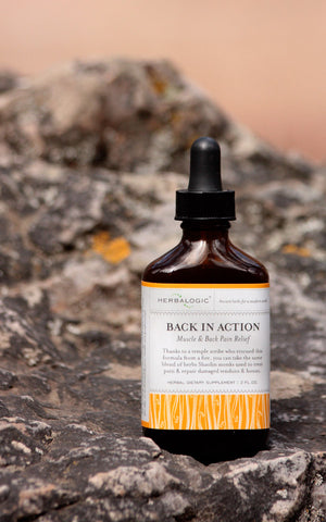 Back in Action: The black belt of herbal formulas for muscle, back, and joint pain with 23 herbs.