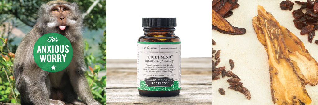 Shop Quiet Mind Herb Caps by Herbalogic. Supports a Calm Mental State in Those with Anxiety, Racing Thoughts, and Hyperactive Mind