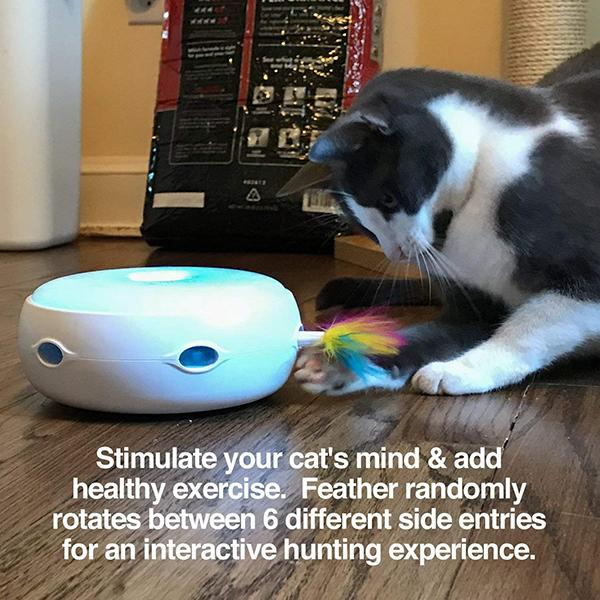 Cat Toy Rotating Feather-Pets-unishouse.com-Unishouse.com