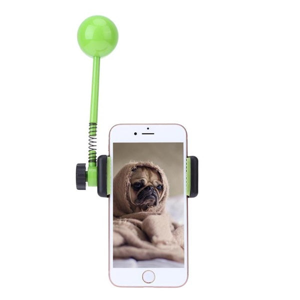 Perfect Treat Launcher- Grabs Pet's Attention for Perfect Photo