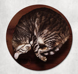 Cat on Desk Mouse Pad and Coaster FREE SHIPPING