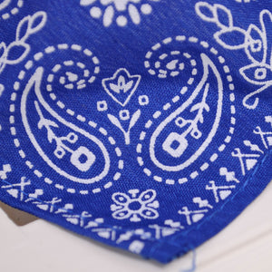 Adjustable Bandana Scarf Collar