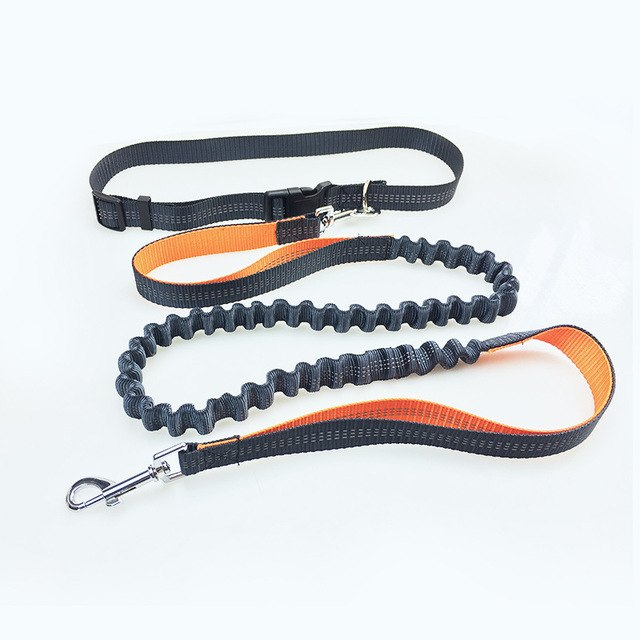 Hands Free Reflective Dog Leash