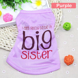 Big Sister Graphic T-Shirt