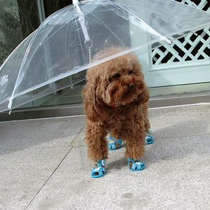 Dog Umbrella Leash