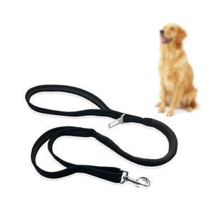 Elastic Walking & Car Leash