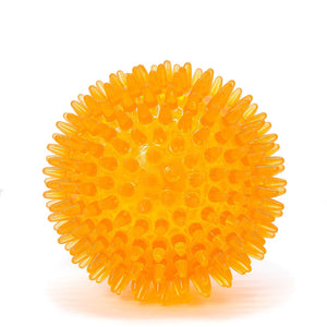 Squeaky Spiky Dental Ball