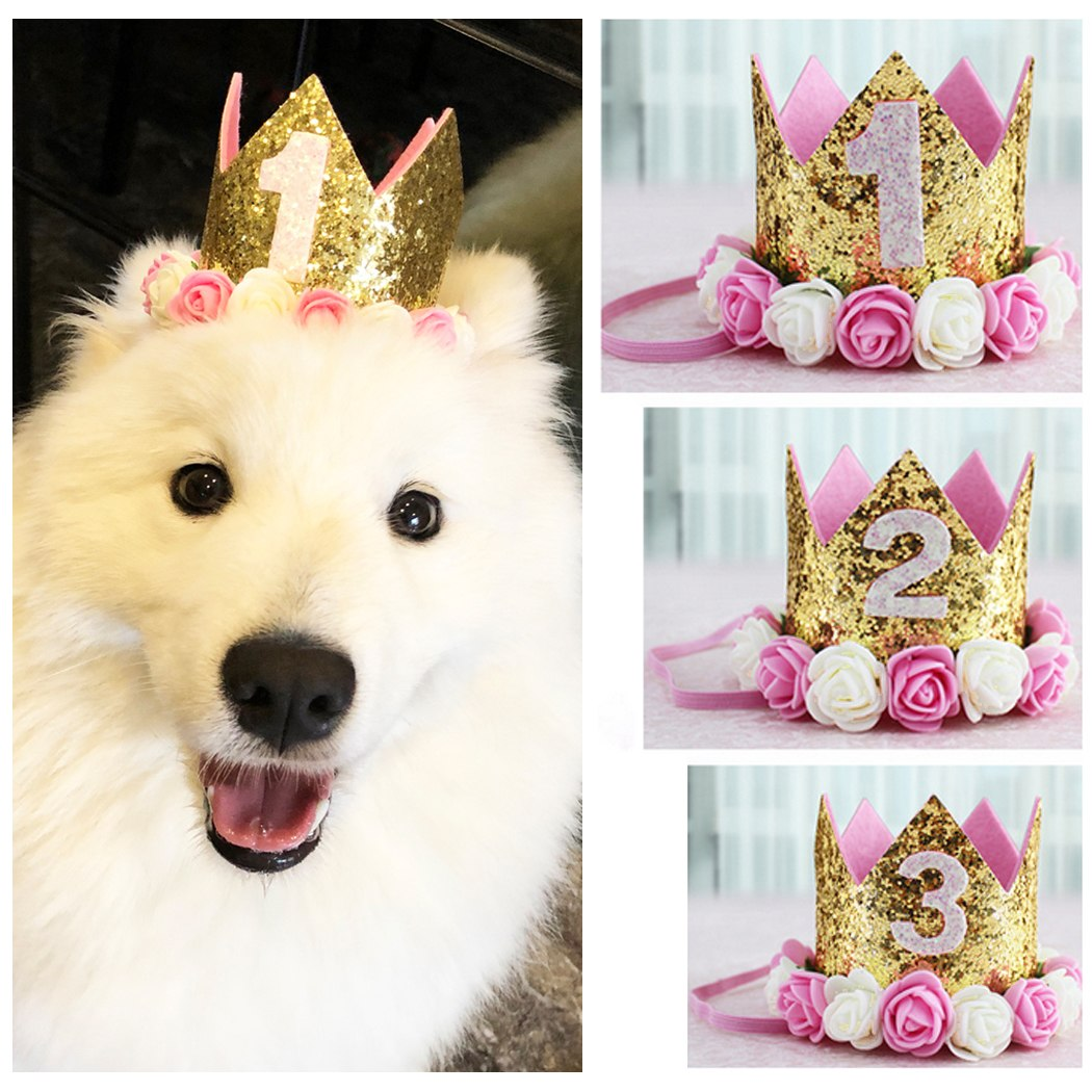 Birthday Crowns