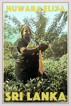 Load image into Gallery viewer, Vintage Poster Nuwara Eliya Tea Plantation Plucker - Poster Sri Lanka