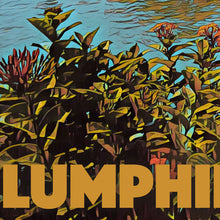 Load image into Gallery viewer, Details of LUMPHINI PARK LAKE - Vintage travel poster