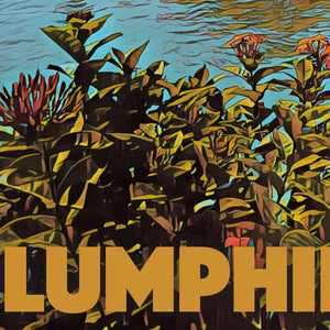 Details of LUMPHINI PARK LAKE - Vintage travel poster