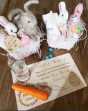 Santa & Easter Bunny Trays