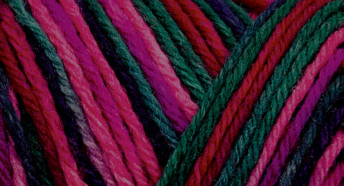 75% wool/ 25% nylon Wildfoote handpainted skein
