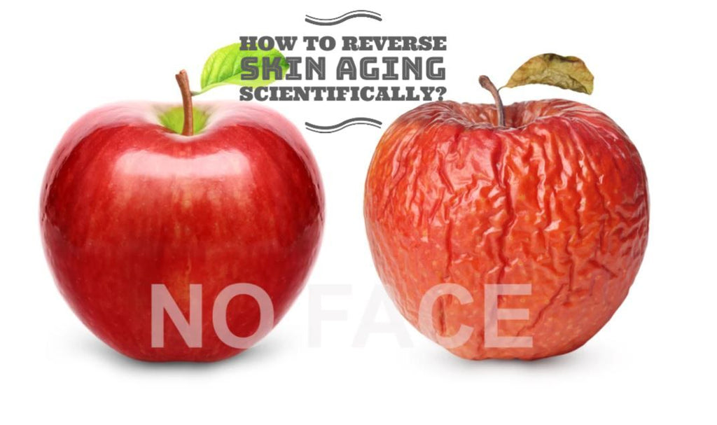 How to Reverse Skin Aging Scientifically?