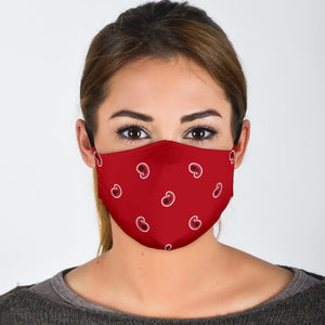 Adjustable Classic Red Paisley Face Mask with 5 Layer Filters