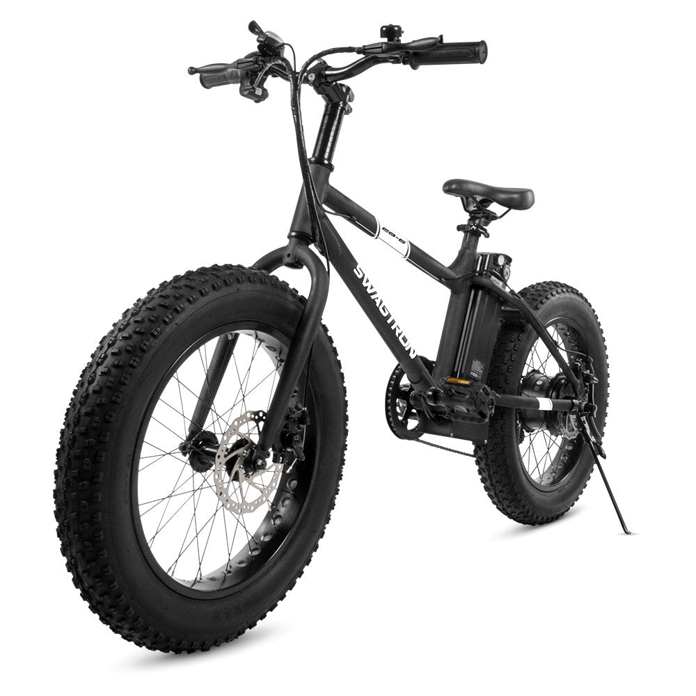 E-Bike 350W Motor, Power Assist, 4Tires, 20Wheels, Removable 36V Lithium Ion Battery, Dual Disc Brakes Electric Bike for Trail Riding