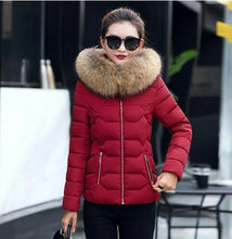 Winter Jacket Fake Raccoon Fur Collar