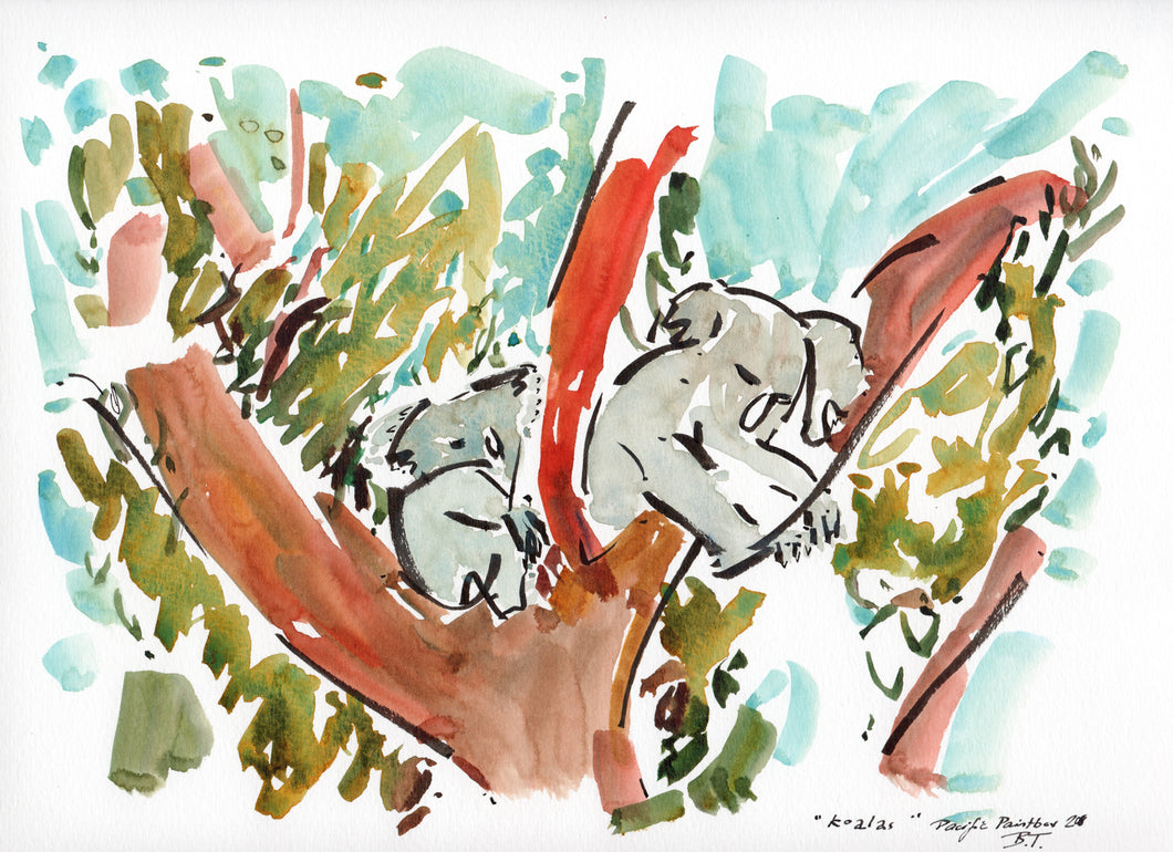 The two koalas in the trees
