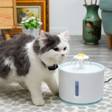 Load image into Gallery viewer, Cat Automatic Feeder Drink Filter  And Water Fountain