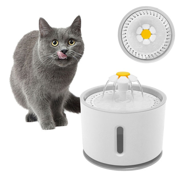 Cat Automatic Feeder Drink Filter  And Water Fountain