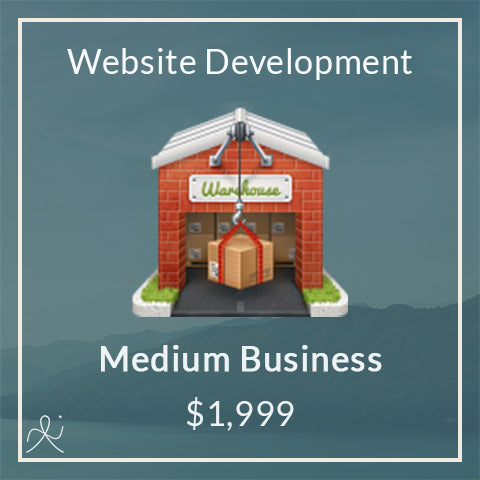 Medium Business Website