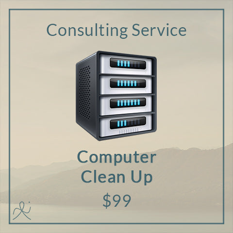 Computer Clean Up Service
