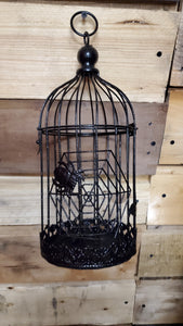 Halloween Birdcage Small