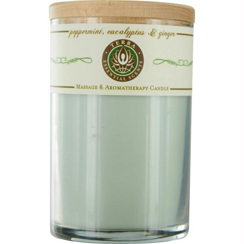 Peppermint, Eucalyptus & Ginger By Terra Essential Scents