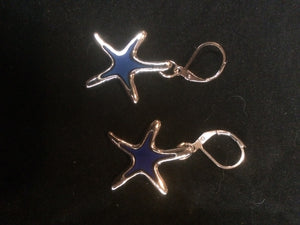 Moody Sea Stars Silver Plated Pewter Leverback Earrings