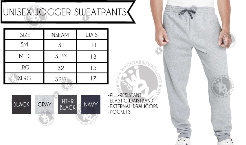 Hogwarts Quidditch Team Jogger Sweatpants