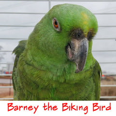 Barney the Biking Bird as Himself!