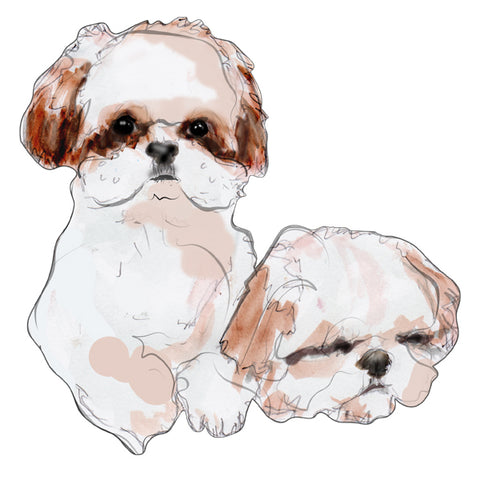Commissioned Pet Portraits by Karen Little