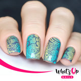 Whats Up Nails - A003 Paisley Buffet stamping plate.