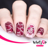 Whats Up Nails - Love is Everywhere stamping plate