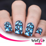 Whats Up Nails - B051 I Just Want Sushi stamping plate
