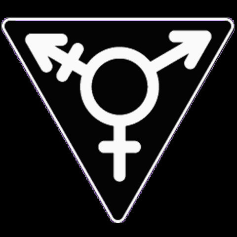 Trans Window Decal