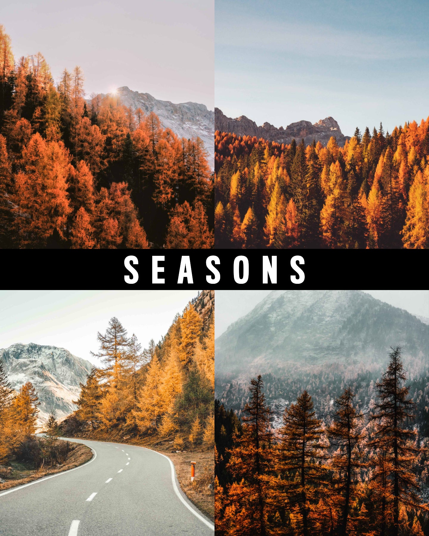 Seasons - Pixuls