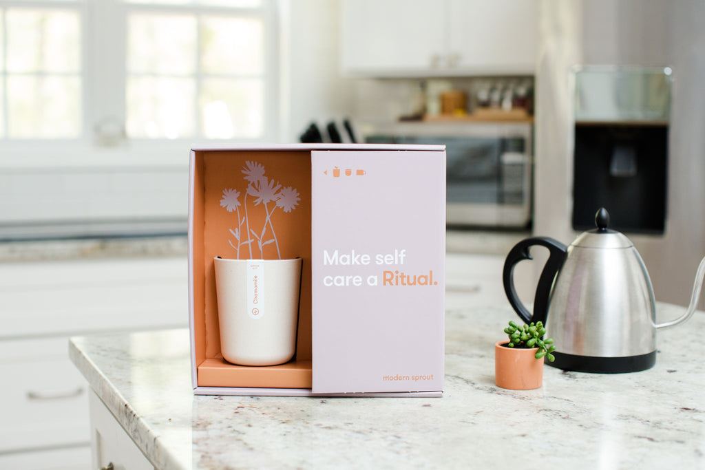 Modern Sprout | Live Well Gift Set - Ritual