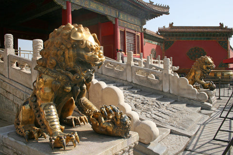Two lion statues on both sides of the gates of buildings