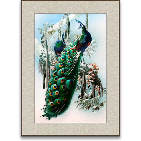 Two Peacocks-2