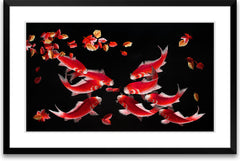 Nine Koi Fish