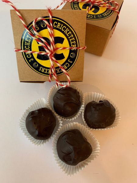 Chocolate-Covered Cricket Protein Bites