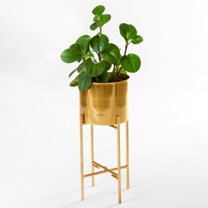 Reese Planter (with stand)
