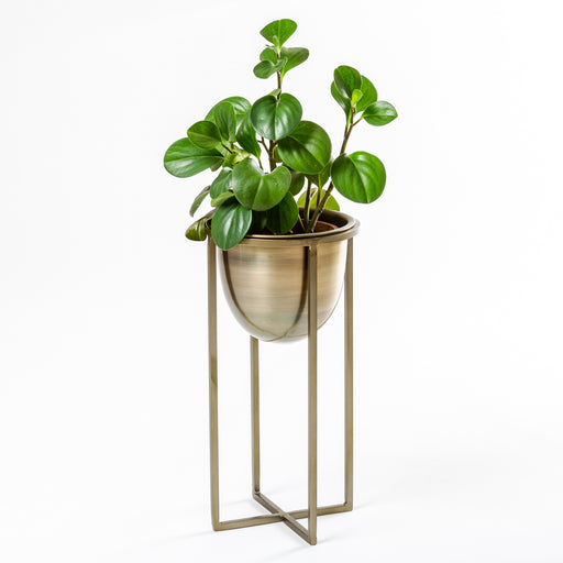 Arc Planter (with stand)