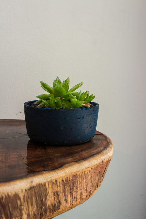 Cement Planter (Blue)