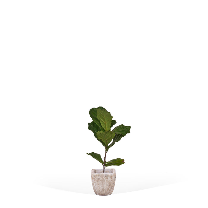 Square Planter - White Distressed