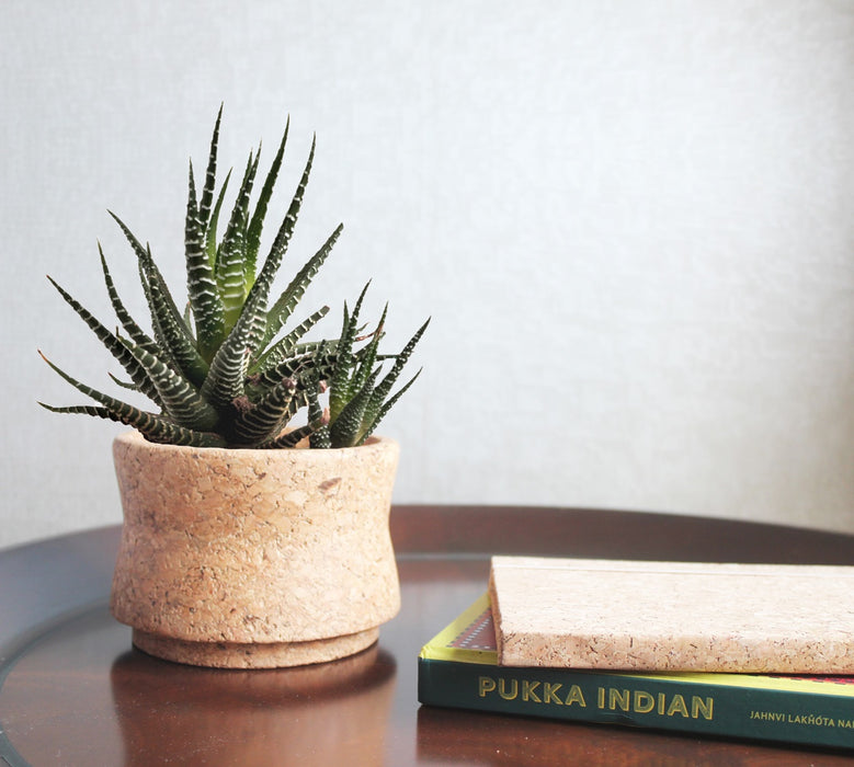 Cork Matka Planter